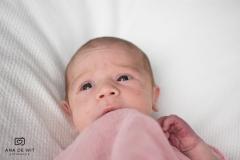 Newborn-Elin_006